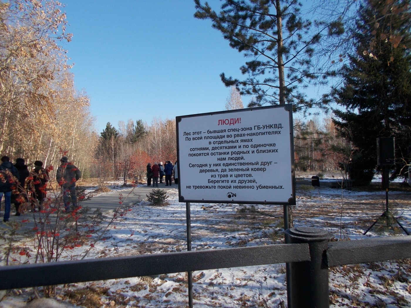 Проект из Иркутской области победил в национальной премии «Гражданская инициатива», фото-2